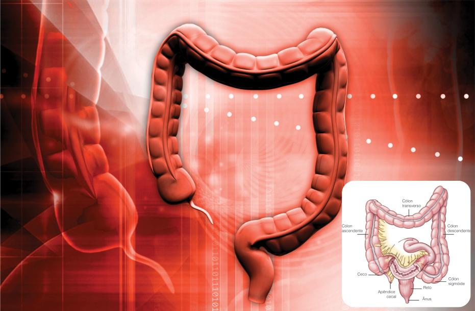 Setembro-Verde-alerta-para-conscientização-do-câncer-de-intestino